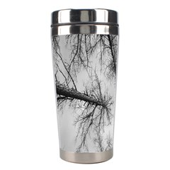 Trees Without Leaves Stainless Steel Travel Tumblers