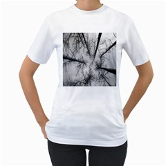 Trees Without Leaves Women s T Shirt (white)