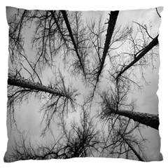 Trees Without Leaves Large Flano Cushion Case (two Sides)