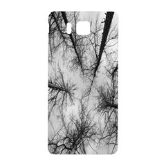 Trees Without Leaves Samsung Galaxy Alpha Hardshell Back Case