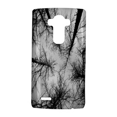 Trees Without Leaves LG G4 Hardshell Case