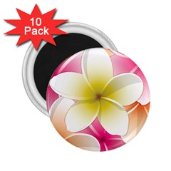 Frangipani Flower Floral White Pink Yellow 2.25  Magnets (10 pack)