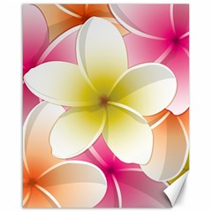 Frangipani Flower Floral White Pink Yellow Canvas 16  x 20