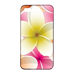 Frangipani Flower Floral White Pink Yellow Apple iPhone 4/4s Seamless Case (Black)