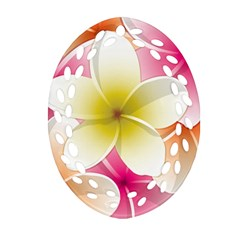 Frangipani Flower Floral White Pink Yellow Ornament (Oval Filigree)