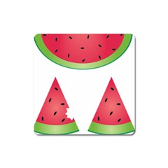 Watermelon Slice Red Green Fruite Square Magnet