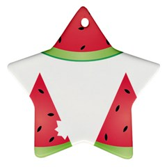 Watermelon Slice Red Green Fruite Star Ornament (Two Sides)