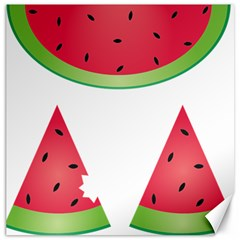 Watermelon Slice Red Green Fruite Canvas 16  x 16