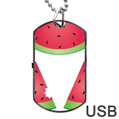 Watermelon Slice Red Green Fruite Dog Tag USB Flash (One Side)
