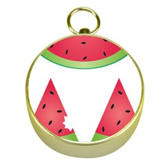 Watermelon Slice Red Green Fruite Gold Compasses