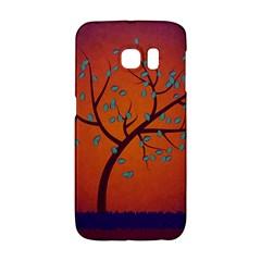 Beautiful Tree Background Galaxy S6 Edge