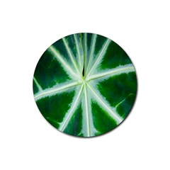 Green Leaf Macro Detail Rubber Coaster (round)