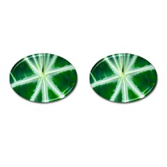 Green Leaf Macro Detail Cufflinks (oval)