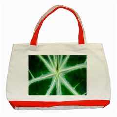 Green Leaf Macro Detail Classic Tote Bag (Red)