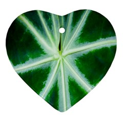 Green Leaf Macro Detail Heart Ornament (Two Sides)