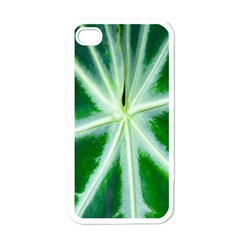 Green Leaf Macro Detail Apple iPhone 4 Case (White)