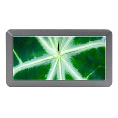 Green Leaf Macro Detail Memory Card Reader (Mini)