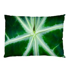 Green Leaf Macro Detail Pillow Case (Two Sides)