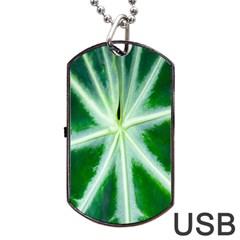 Green Leaf Macro Detail Dog Tag USB Flash (One Side)