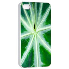 Green Leaf Macro Detail Apple Iphone 4/4s Seamless Case (white)