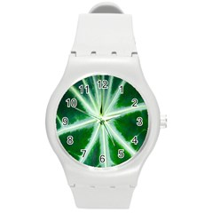 Green Leaf Macro Detail Round Plastic Sport Watch (M)