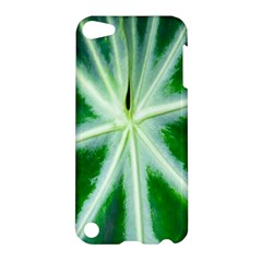 Green Leaf Macro Detail Apple iPod Touch 5 Hardshell Case