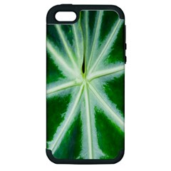 Green Leaf Macro Detail Apple iPhone 5 Hardshell Case (PC+Silicone)