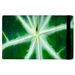 Green Leaf Macro Detail Apple Ipad 2 Flip Case