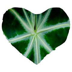 Green Leaf Macro Detail Large 19  Premium Heart Shape Cushions