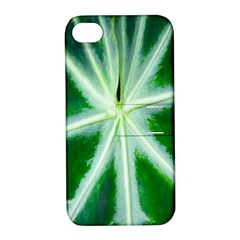 Green Leaf Macro Detail Apple Iphone 4/4s Hardshell Case With Stand