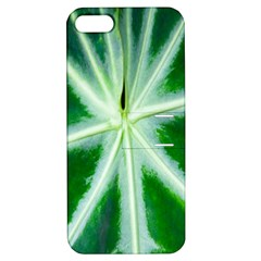 Green Leaf Macro Detail Apple iPhone 5 Hardshell Case with Stand