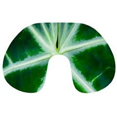 Green Leaf Macro Detail Travel Neck Pillows