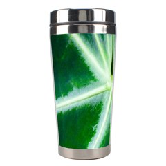 Green Leaf Macro Detail Stainless Steel Travel Tumblers
