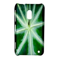Green Leaf Macro Detail Nokia Lumia 620