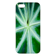 Green Leaf Macro Detail Iphone 5s/ Se Premium Hardshell Case
