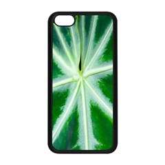 Green Leaf Macro Detail Apple iPhone 5C Seamless Case (Black)