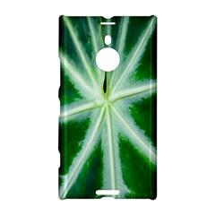 Green Leaf Macro Detail Nokia Lumia 1520