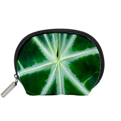 Green Leaf Macro Detail Accessory Pouches (Small)