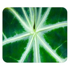 Green Leaf Macro Detail Double Sided Flano Blanket (Small)