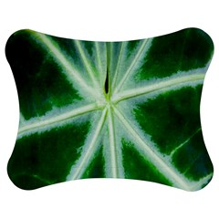 Green Leaf Macro Detail Jigsaw Puzzle Photo Stand (Bow)