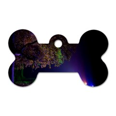 Illuminated Trees At Night Dog Tag Bone (Two Sides)
