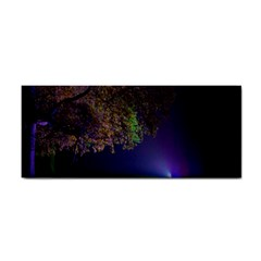 Illuminated Trees At Night Cosmetic Storage Cases