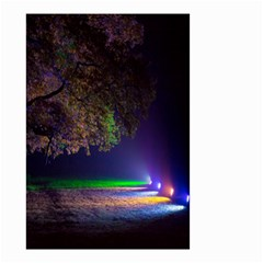 Illuminated Trees At Night Small Garden Flag (Two Sides)