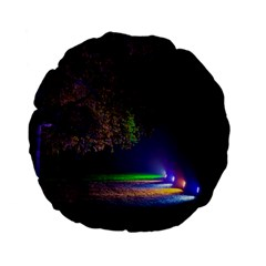 Illuminated Trees At Night Standard 15  Premium Flano Round Cushions