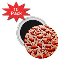 Water Drops Background 1.75  Magnets (10 pack)