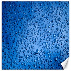 Water Drops On Car Canvas 12  x 12