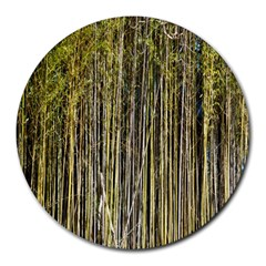 Bamboo Trees Background Round Mousepads
