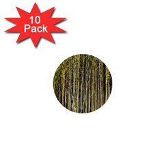 Bamboo Trees Background 1  Mini Buttons (10 pack)
