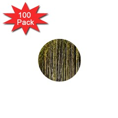 Bamboo Trees Background 1  Mini Buttons (100 Pack)