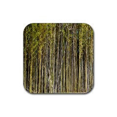 Bamboo Trees Background Rubber Square Coaster (4 pack)